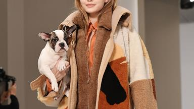 According To Tod's, Puppies Will Be Next Season's Cutest Accessory