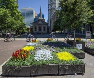 City of Sydney Plants Giveaway