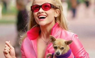 Reese Witherspoon Is In Talks To Star In 'Legally Blonde 3'