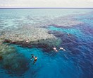 Tiffany & Co. Donates $1.4 Million To Great Barrier Reef Conservation