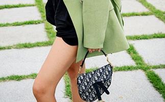Dior Saddle Bag Nicole Warne
