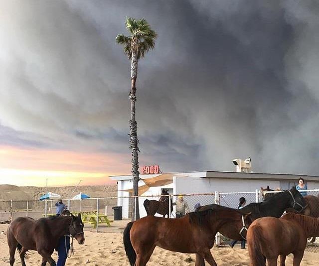 Malibu wildfires