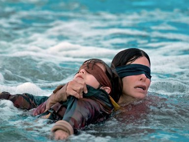 13 of the Best 'Bird Box' Memes