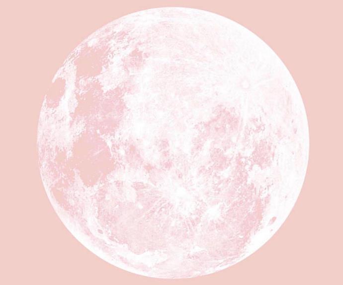 Strawberry Snow Moon
