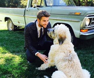 Liam Hemsworth with his dog.