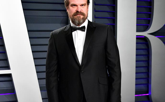 David Harbour Girlfriend