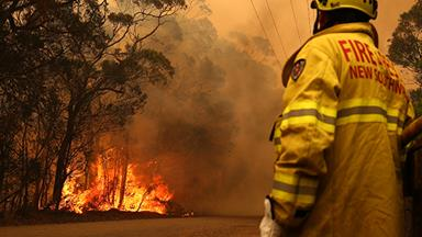 Ways You Can Help The Victims Of The Australian Bushfires
