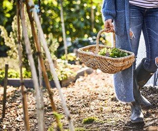 girl in vegetable garden with basket