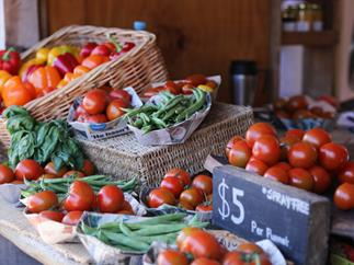 Foodie destination: Matakana Village Farmers' Market