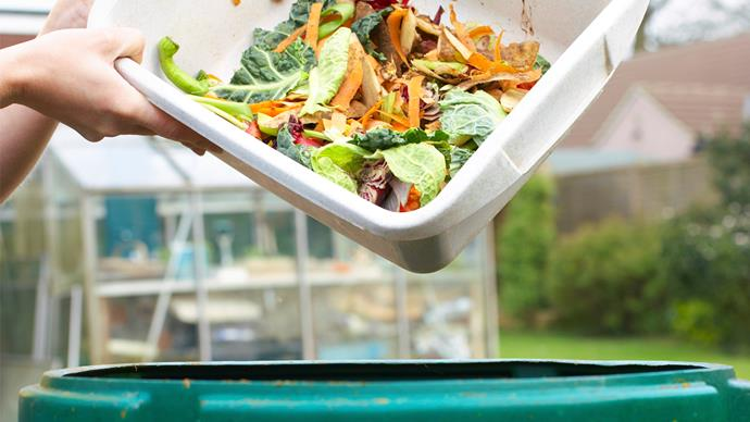Composting 101: Your guide to getting started