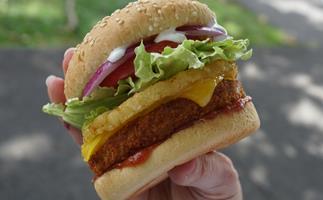 Vegan Chook Free Burgers BurgerFuel