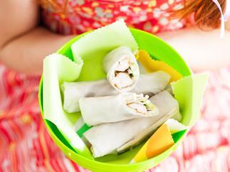 teriyaki chicken rice paper rolls