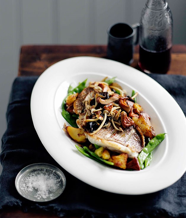 Chish and fips (and mushrooms)