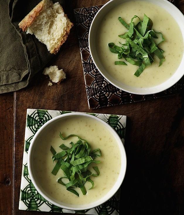 Nicola potato soup