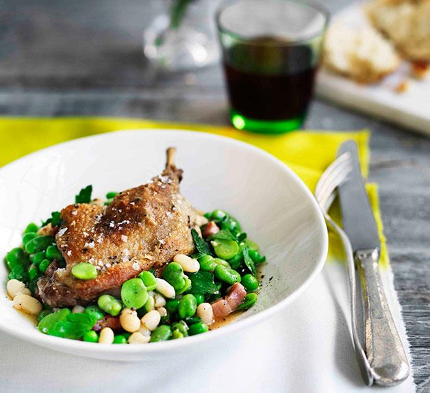 Confit duck with white beans, speck and broad beans