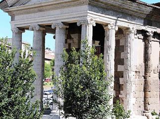 Roman roaming
