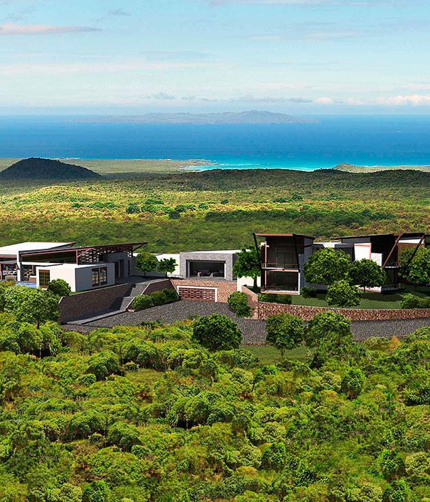 **** **Eco-lodge-y**   Pikaia Lodge in the Galapagos Islands.