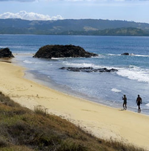 **** Matakana  Quick weekend escape? Head over the Tasman to Matakana, Auckland's version of the Hamptons and a cornucopia of produce from both orchard and ocean.  [click here for the article](http://www.gourmettraveller.com.au/matakana-new-zealand.htm)