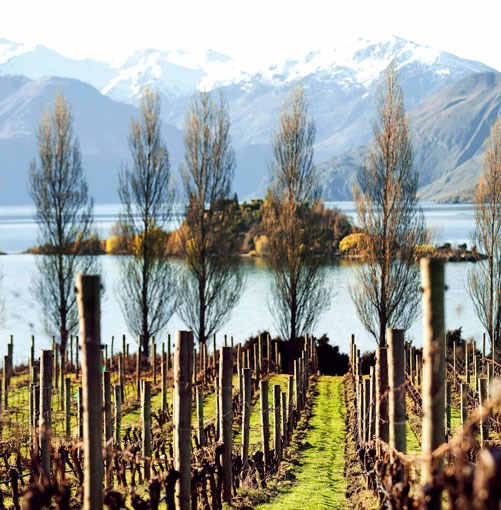 **** Wanaka  Luxury digs, an open fire, a glass of organic pinot noir, lamb rack with artichoke purée… the après-ski action in New Zealand's Wanaka is just as exciting as the skiing.  [click here for the article](http://www.gourmettraveller.com.au/wanaka-new-zealand.htm)