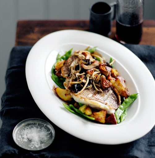 **Chish and fips (and mushrooms)** **Chish and fips (and mushrooms)**    [View Recipe](http://gourmettraveller.com.au/chish-and-fips-and-mushrooms.htm)     PHOTOGRAPH **BEN DEARNLEY**