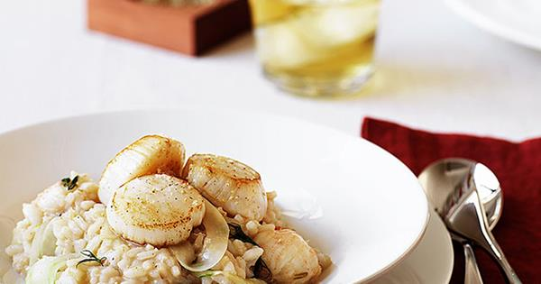 Balmain bug, scallop and fennel risotto with single malt whisky
