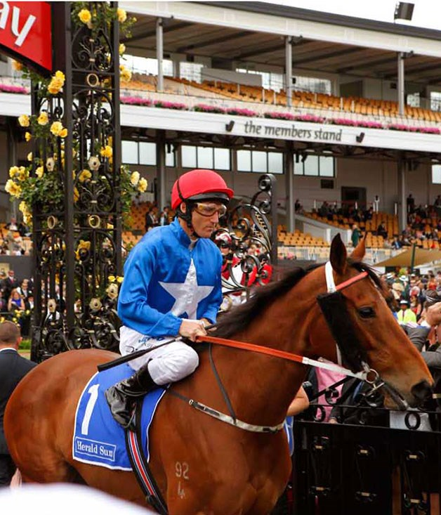 **** Trackside at the Melbourne Cup (2011).