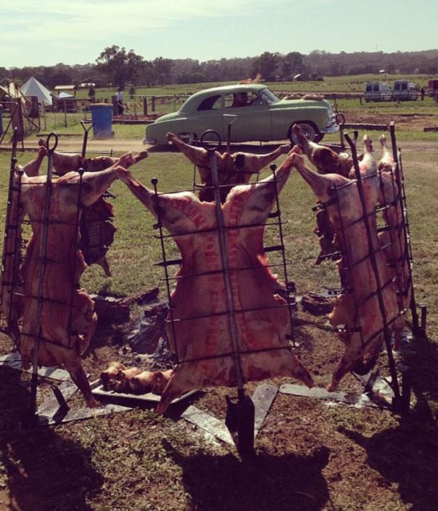 "**** [@portenosydney](http://instagram.com/portenosydney ""Porteno"") \- Porteño's Instagram account proves that even lamb carcasses can look pretty. See also [@bodegasydney](http://www.instagram/bodegasydney ""Bodega"")"