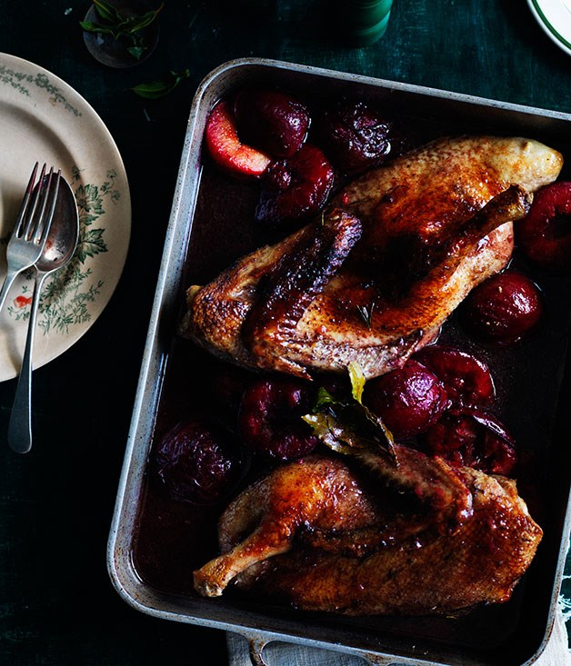 Duck roasted in Lambrusco with blood plums and bay