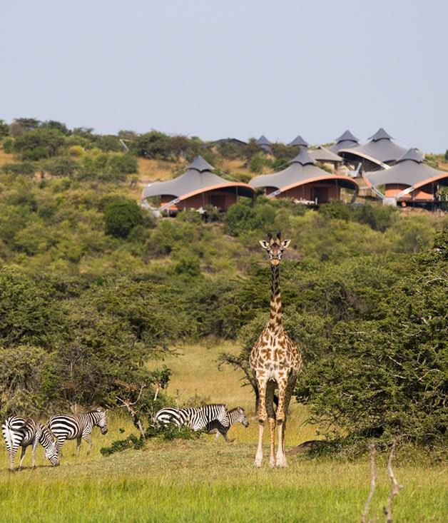 """**Mahali Mzuri, Kenya** The latest addition to Sir Richard Branson's hotel empire, [Mahalia Mzuri](http://www.mahalimzuri.virgin.com/ """"Mahali Mzuri"""") ticks all the boxes with its glammed-up safari tent accommodation, sweeping views over the Motorogi Conservancy and long list of luxe creature comforts (healing spa treatments and vintage champagnes, we're looking at you)."""