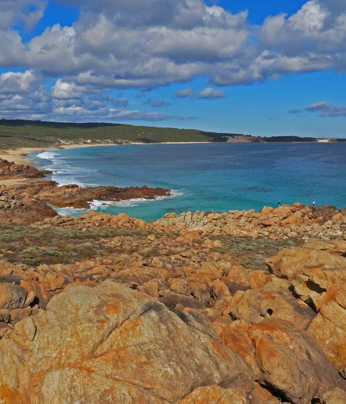 **WA: Margaret River** The [Margaret River](http://www.margaretriver.com) region, a wild knob of land jutting into the sea off the bottom corner of WA, crowned in the north by Cape Naturaliste and Cape Leeuwin in the south, is famous for its food and wine, but it also has a much wilder side. Situated 280km south of Perth, highlights include Boranup Karri Forest, great surfing beaches, whale watching, limestone caves and road-side wildflowers.