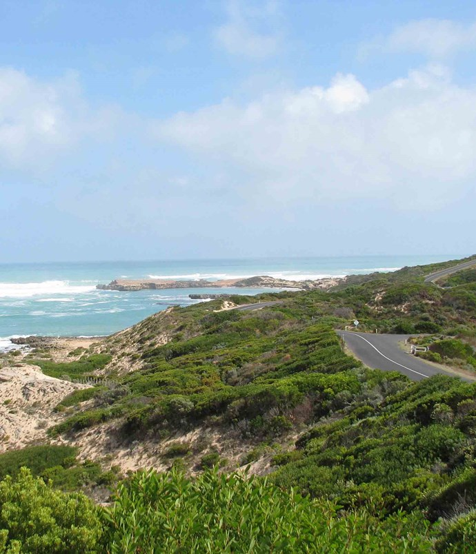 **South Australia: Bowman Scenic Drive** The [Bowman Scenic Drive](http://www.southaustralia.com/regions/limestone-coast.aspx) is a short but dramatic coastal drive that sweeps around the beaches and dunes south of Beachport around halfway between Adelaide and the Victorian border. Don't miss the Pool of Siloam, a salt lake seven times saltier than the sea and reputed to cure all matter of aches and pains.