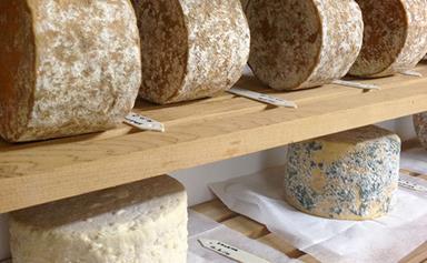 New Zealand's raw-milk cheeses