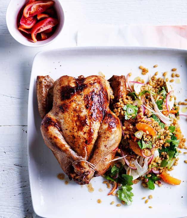 Orange-brined chicken with freekeh, blood orange and fennel salad