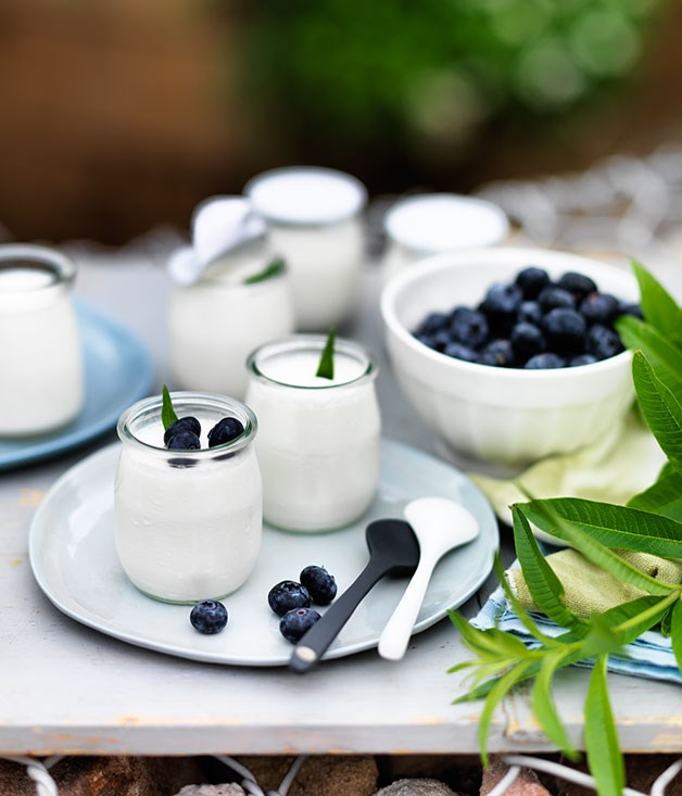 Pot-set yoghurt with lemon verbena and blueberries