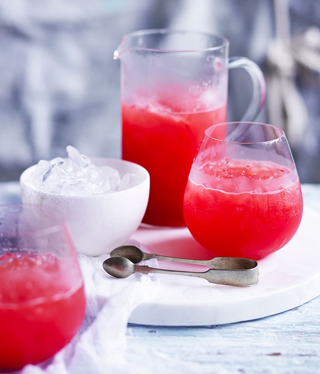 Campari-Watermelon Spritz Recipe