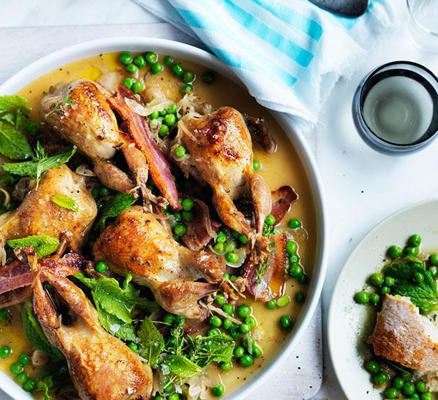 Roast quail with bacon, peas and mint