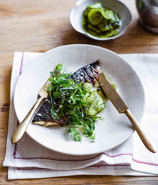 **MACKEREL WITH PICKLED CUCUMBER, HORSERADISH AND HERBS**