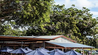 A food lover's guide to the Byron Bay region