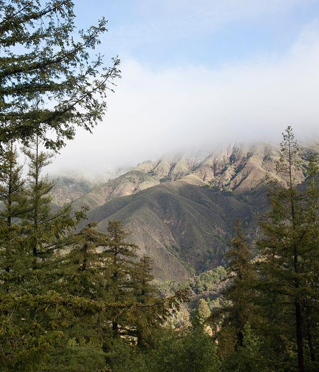 Santa Lucia Mountains, California