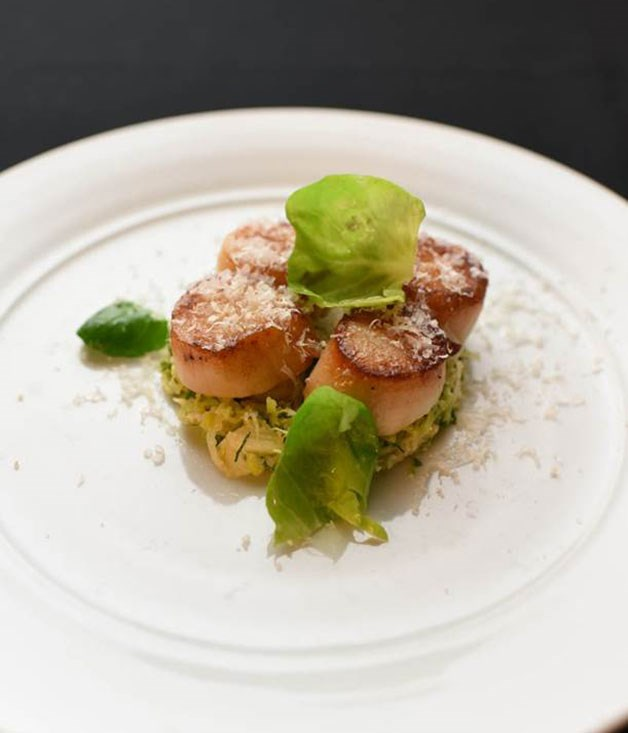 **** An entrée of seared scallops with Brussels sprouts by Aria catering.
