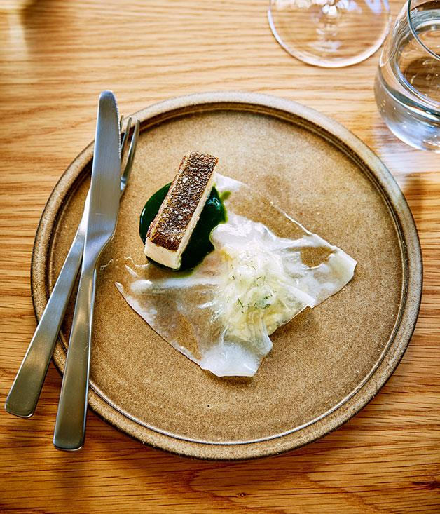 **** Silvereye's kingfish with fennel and lardo
