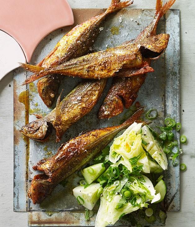 **Yellowtail scad fish-fry with cucumber and iceberg salad**