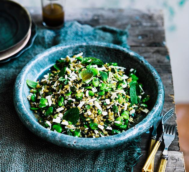 Farro with broad beans, ricotta salata, mint and lovage
