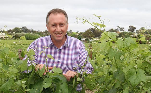 Alternative wines from South Australia's Riverland