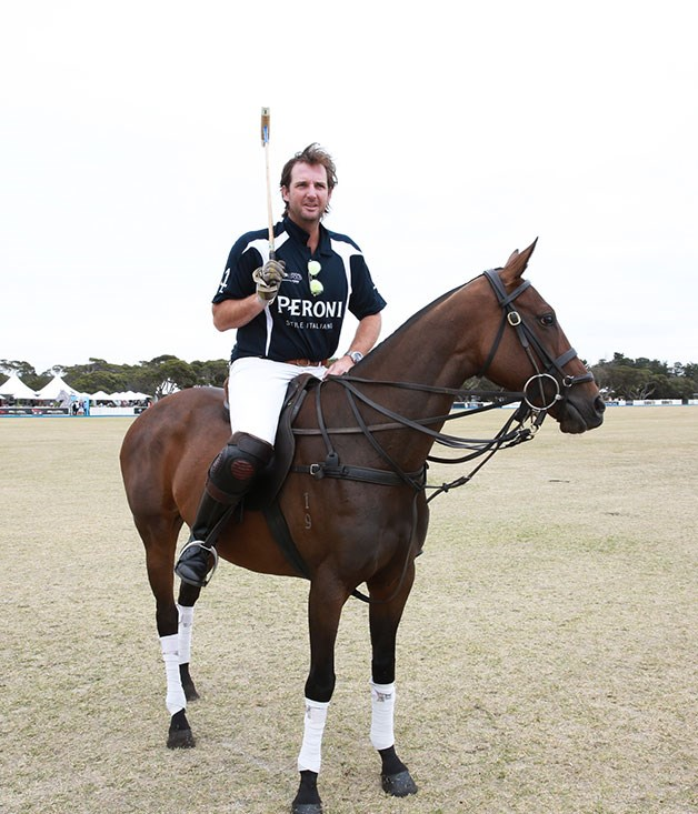 **** A Peroni horse and rider, ready to take the field.