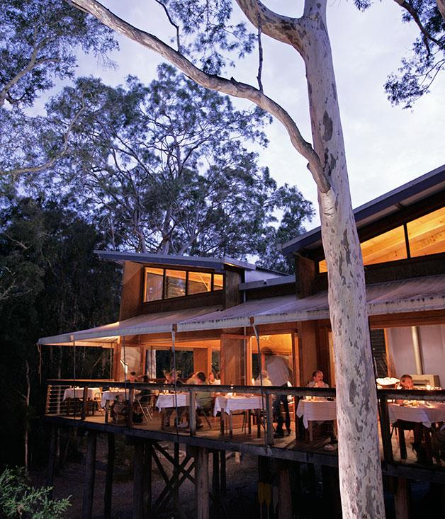"**ESCAPE: NSW Far South Coast** If you haven't yet had the pleasure, take the Princes Highway by the hand and give it a twirl. A night (at the very least) spent at eco-lodge [Paperbark Camp](http://www.gourmettraveller.com.au/travel/travel-news-features/2014/10/unique-australian-hotels/ ""Unique Australian Hotels"") just outside Huskisson, a milk bar-style burger at [Dulcie's Cottage](http://www.gourmettraveller.com.au/restaurants/restaurant-news-features/2015/12/dulcies-cottage-merimbula/ ""Dulcie's Cottage"") by Merimbula Lake, gelati at Bermagui Gelati Clinic, and a stop at Tathra for award-winning oysters are all a must. Plan your trip with the help of our [travel guide to NSW's South Coast](http://www.gourmettraveller.com.au/travel/travel-guides/2016/1/nsw-far-south-coast-travel-guide/ ""NSW Far South Coast Travel Guide"")."