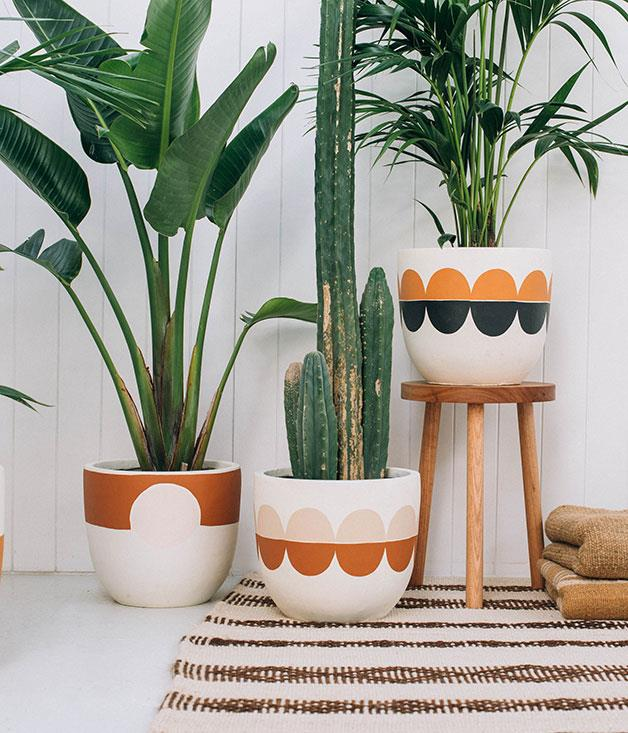 """**Pop and Scott pot** Enshrine your budding romance with a """"love fern"""" housed in one of Pop and Scott's fibreglass [pots](http://www.popandscott.com """"Pop and Scott""""). The hand-painted modernist designs always look great, even if your fern needs pruning. _Priced from $125_"""