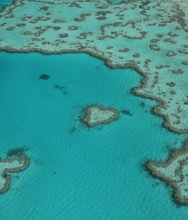 "**Heart Reef in The Whitsundays** Got your sights set on a big romantic gesture? Like, say, a highly literal (and Instagram-friendly) visual cue? Take your love to the skies in a seaplane adventure over The Whitsundays' sandy shores and heart-shaped coral reef. [_tourismwhitsundays.com.au_](http://www.tourismwhitsundays.com.au/ ""Tourism Whitsundays"")"