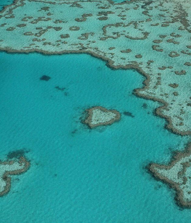 """**Heart Reef in The Whitsundays** Got your sights set on a big romantic gesture? Like, say, a highly literal (and Instagram-friendly) visual cue? Take your love to the skies in a seaplane adventure over The Whitsundays' sandy shores and heart-shaped coral reef. [_tourismwhitsundays.com.au_](http://www.tourismwhitsundays.com.au/ """"Tourism Whitsundays"""")"""