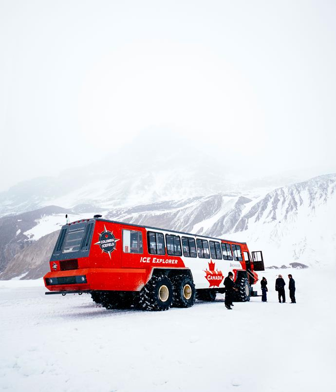 **Athabasca Glacier**